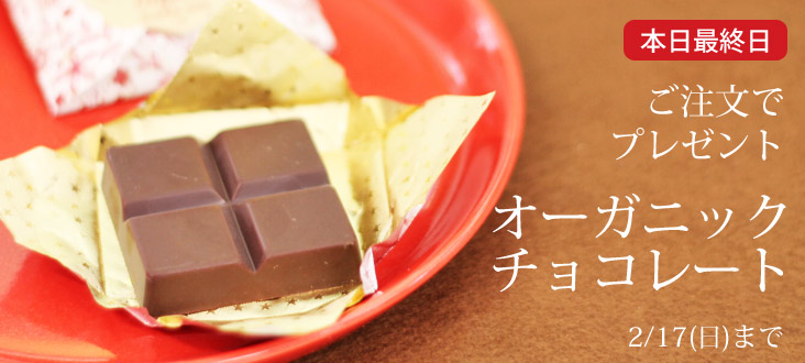 チョコプレゼント